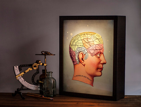 """Phrenology """"Picture of good health"""""""