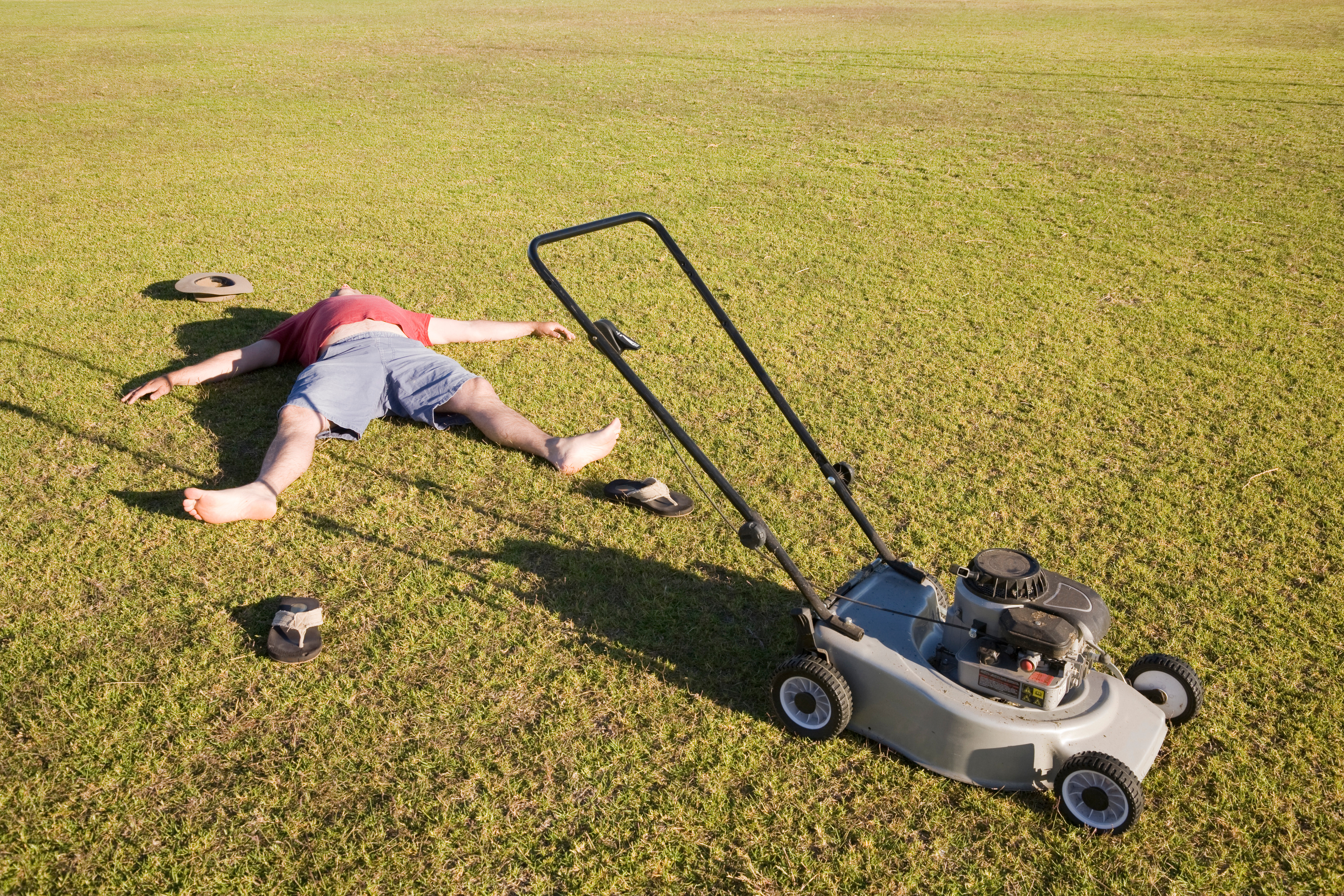 Large Lawn Care