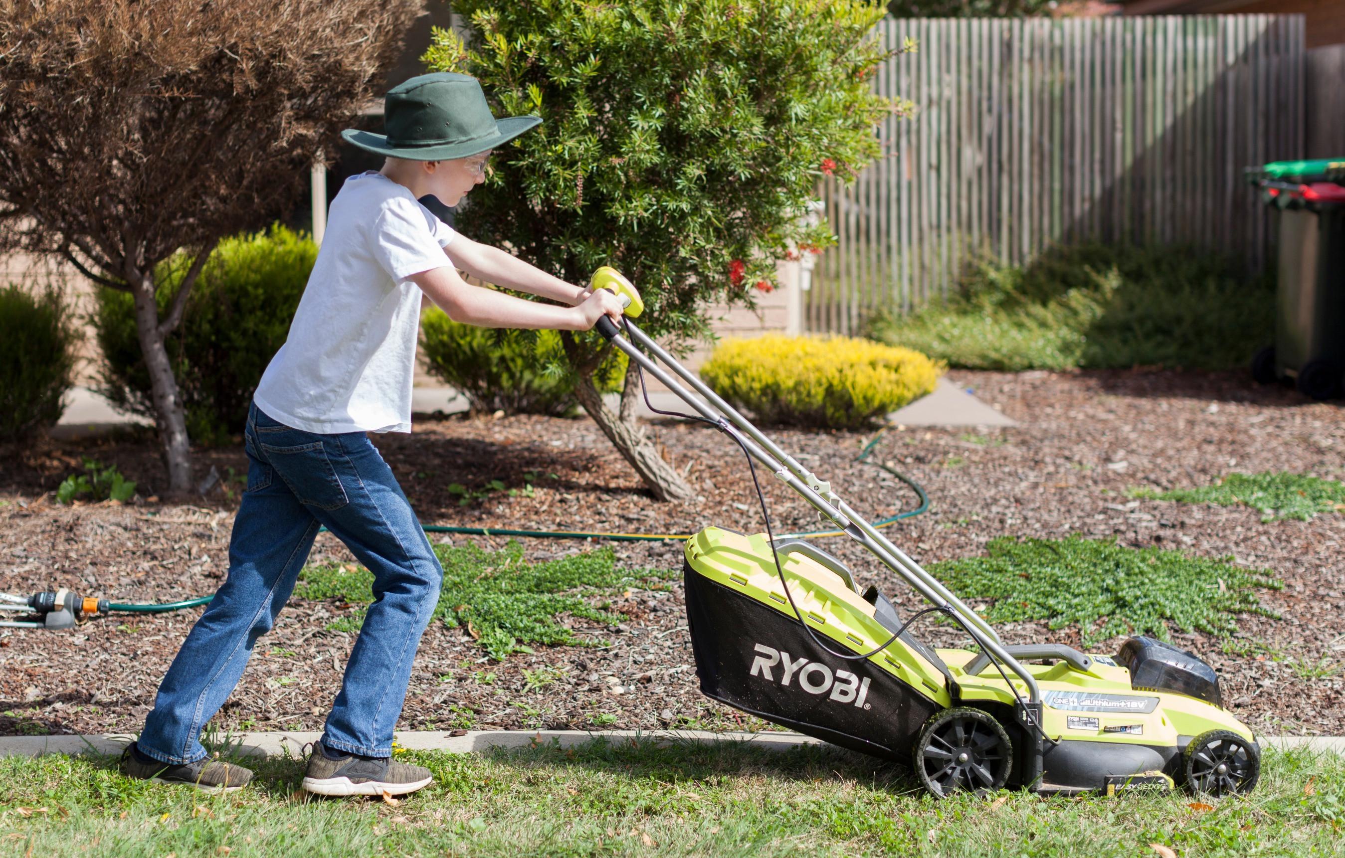 Medium Lawn Care