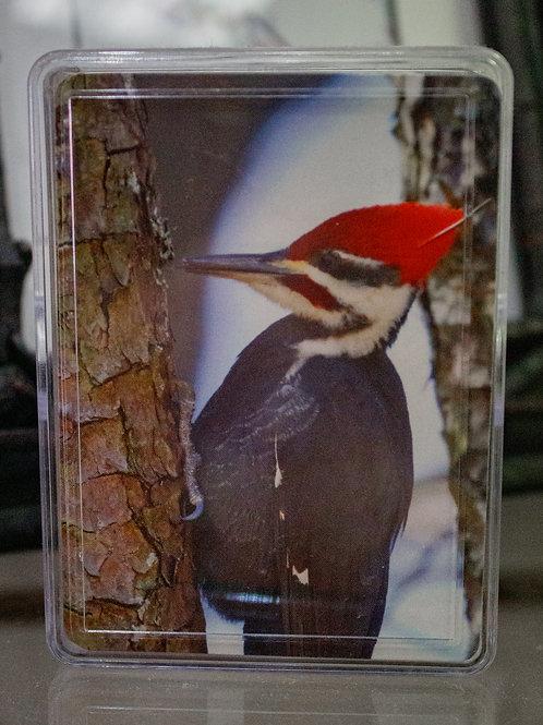 Redhead Hummingbird Playing Cards