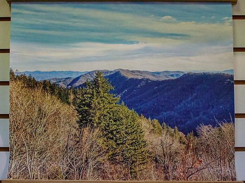 """Tennessee Overlook"""
