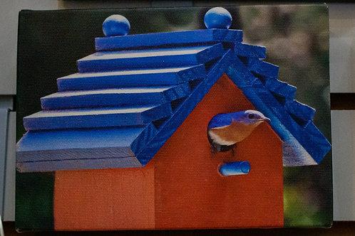 Birdhouse Canvas