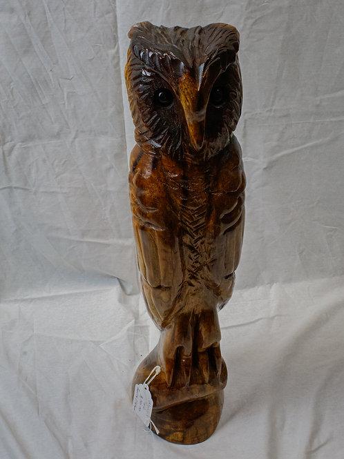 Walnut Owl
