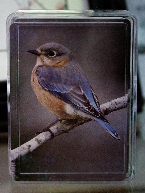Blue Bird Playing Cards