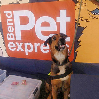 Bend Pet Express.JPG