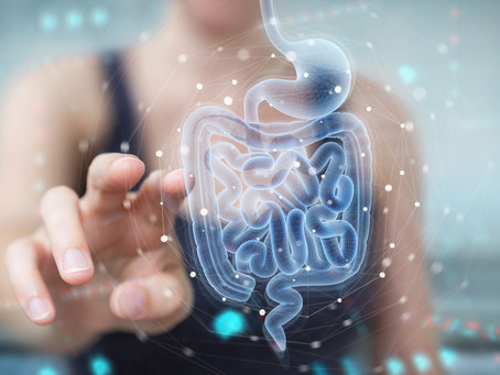 How can you control pain and disease through gut health and your microbiome management?