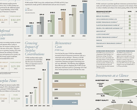 pure-2012ar_charts_03-crop-u2413.jpg