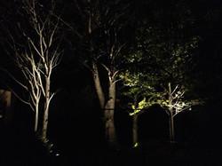 Landscape lighting design, House J
