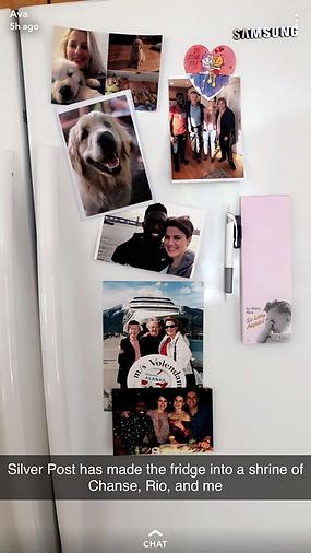 the silver post testimonial fridge.PNG