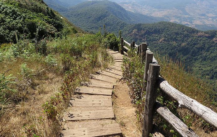 Kew_Mae_Pan_Nature_Trail_Steps_edited.jpg