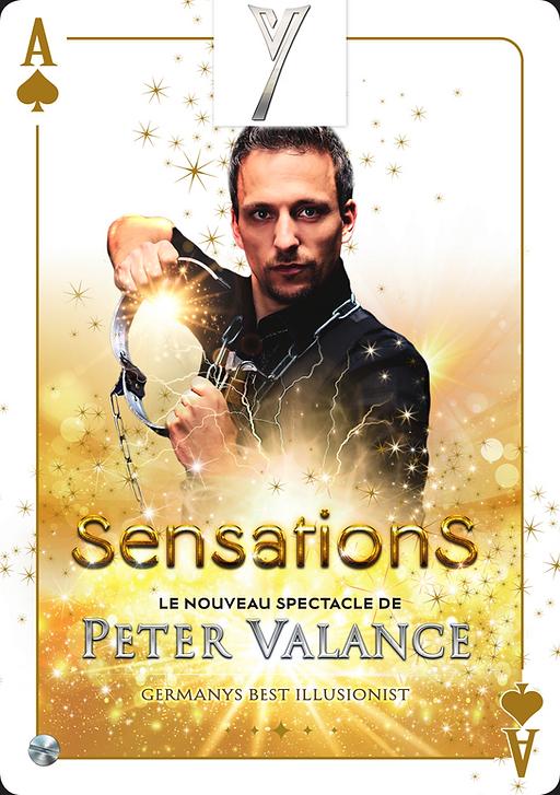 Spectacle Sensations Alsace Y Show Production