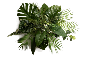 Palmen bouquet72.png