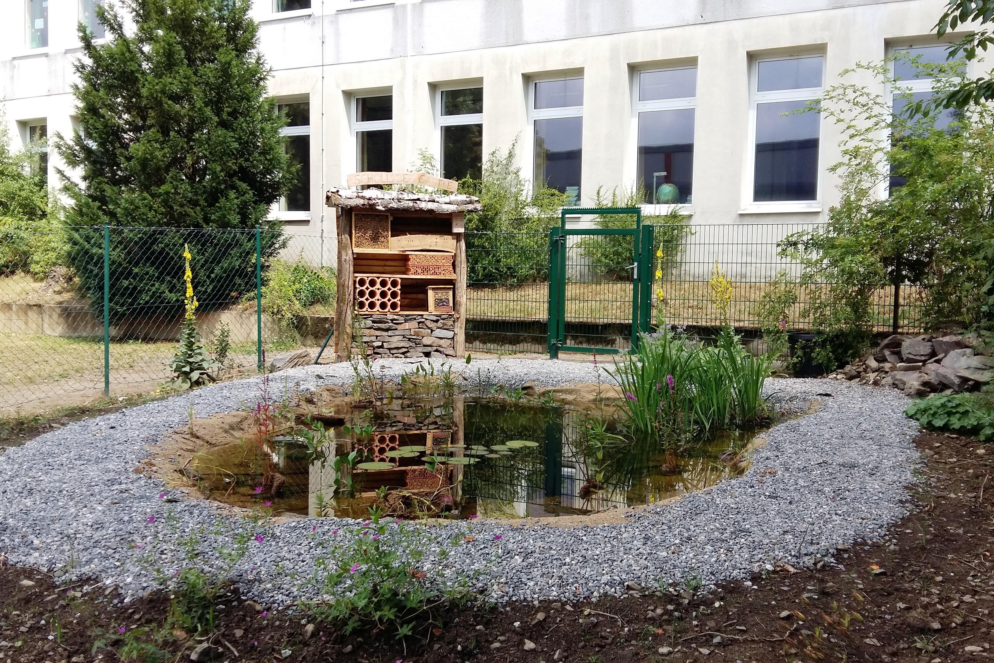 B1 Neuer Teich mit Wildbienenhotel