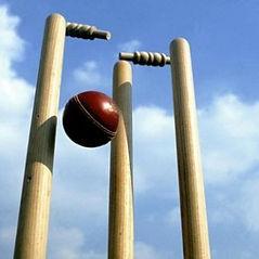 Wicket 3.JPG