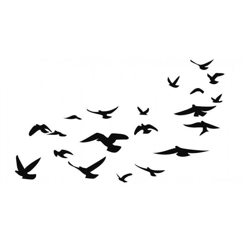 Pássaros Brincadeira