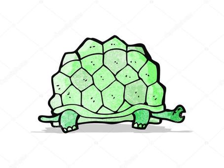 Jogo da Tartaruga Gigante