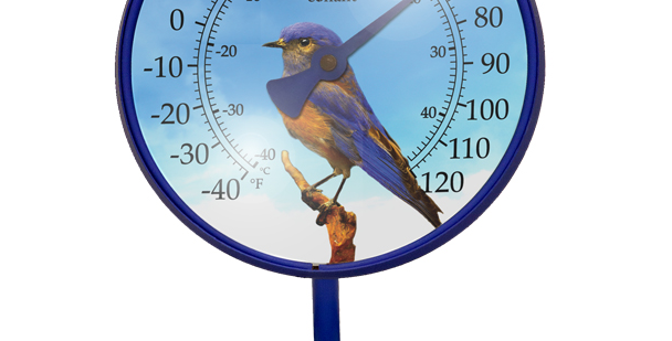 "Décor Convertible Small Thermometer (""Western Bluebird"" in Royal Blue)"