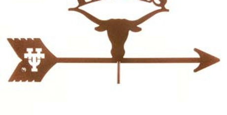 Texas Longhorns Top