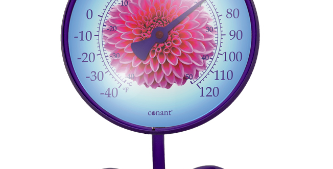 "Décor Convertible Small Thermometer (""Pink Dahlia"" in Purple Amethyst)"