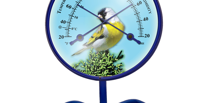 "Décor Convertible Small Comfortmeter (""Lawrence's Goldfinch"" in Royal Blue)"