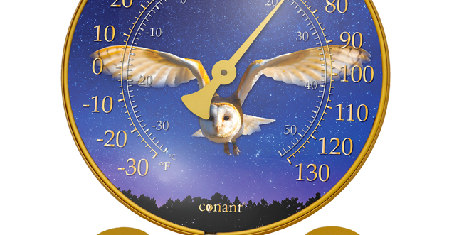 "Décor Convertible Large Thermometer (""Night Sky Barn Owl"" in Golden Rod)"