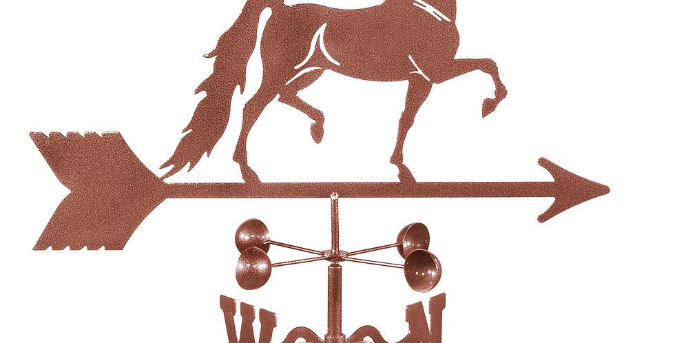 Saddle Bred Horse