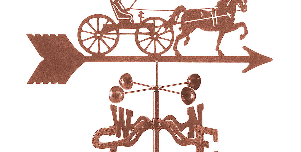 Doctors Horse and Buggy