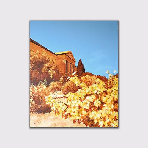 La roseraie, 55 x 46, acrylique sur toile, 2015