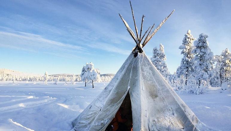 Camp_Ripan_Activity_Winter_Dog_sled_2785