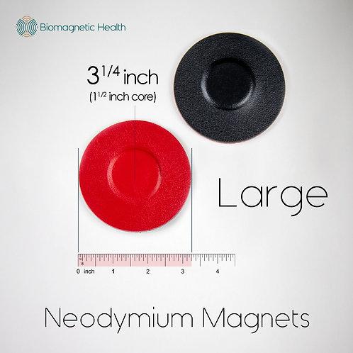 Large Neodymium Magnet Pair - 1.5 inch
