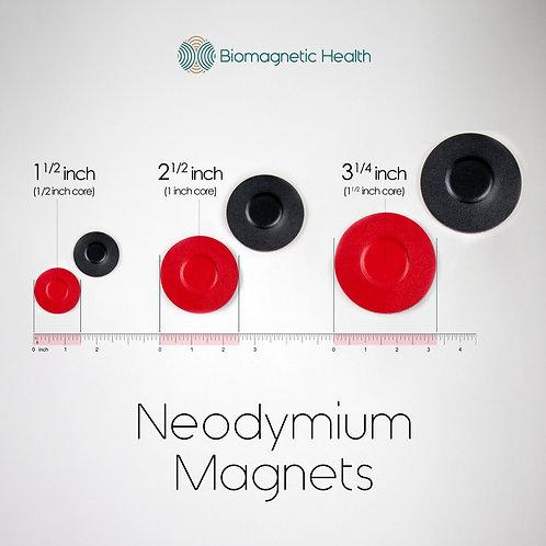 Biomagnetism Starter Kit