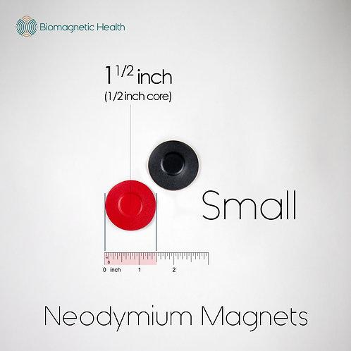 Small Neodymium Magnet Pair - 0.5 inch
