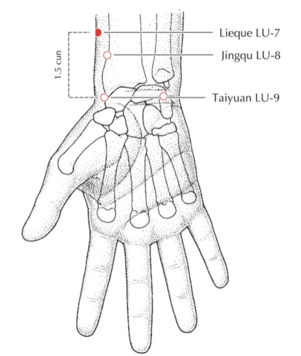 Acupuncture point Lung 7 (LU 7)