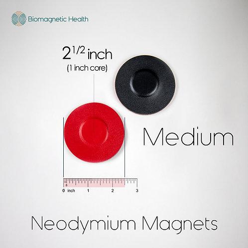Medium Neodymium Magnet Pair - 1.0 inch