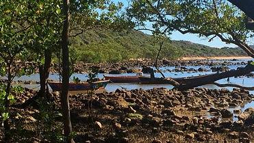 Mangue-Pedra-Búzios-768x433.jpg