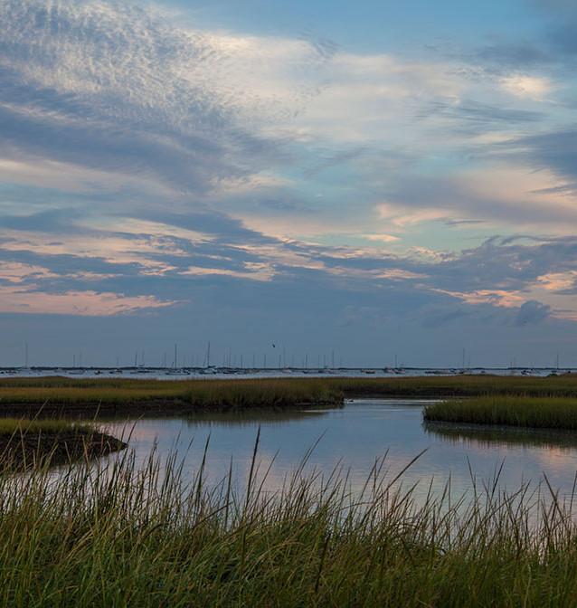 Island Home Marsh