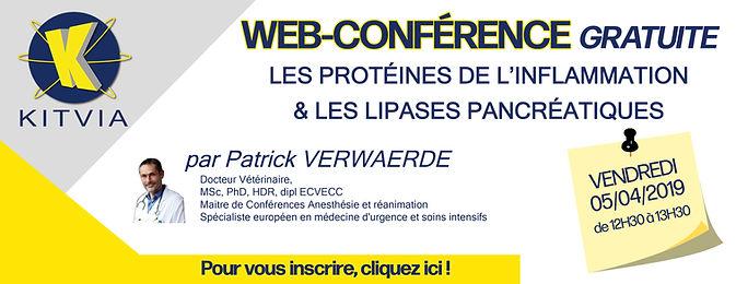 bandeau webconference PV.jpg