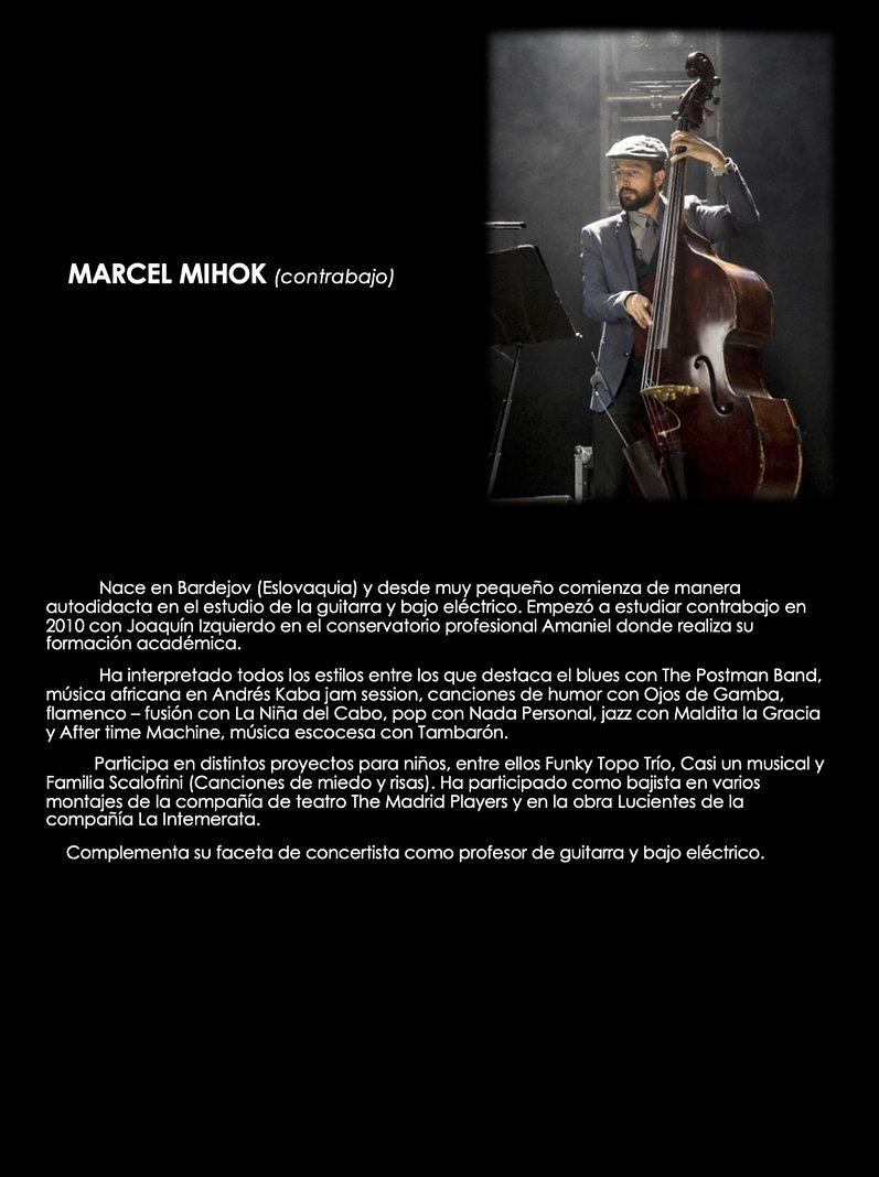 Marcel Mihok_edited.jpg