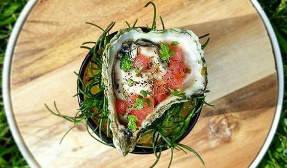 Watermelon Kumamoto oyster - Microgreens