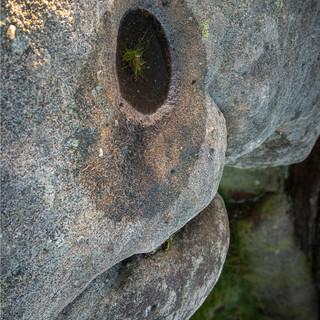 Owler film image 14