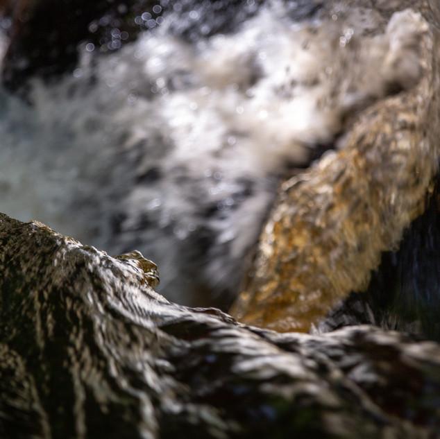 padley close fall 1.jpg