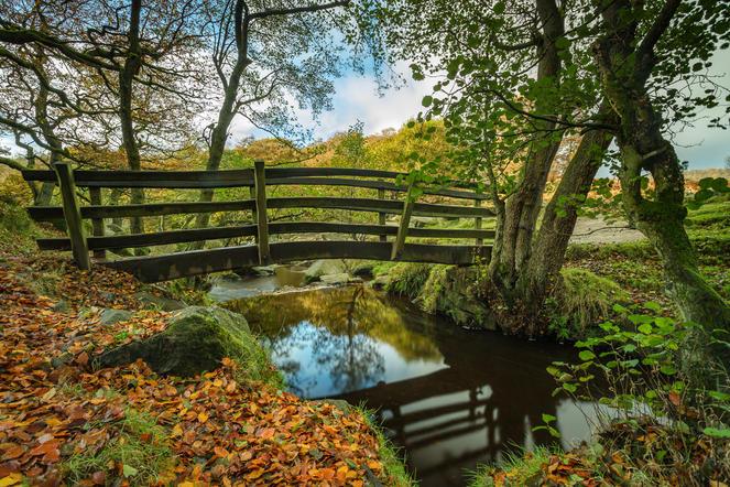 Padley Gorge Autumn colours 1 (1 of 1).j