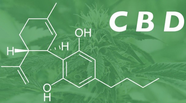 CBD הרכב כימי