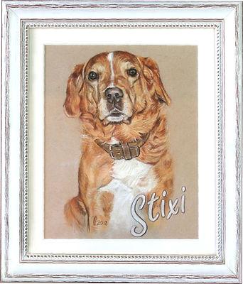 Tolles Andenken an den verstorbenen Hund, Hundezeichnung, Memorial Portrait von Pastellblicke Tierportraits Jutta Pallasch