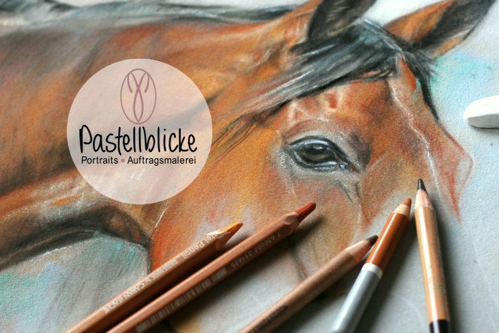 Pferdeportrait, Tierportraits, Pferdezeichnung, Tierzeichnung