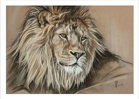Zeichnung Löwe in Pastellkreide - Postkarten / Künstlerkarten von Jutta Pallasch - Pastellblicke Tierportraits