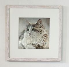 Pastellblicke-Tierportraits, Tierzeichnung, Katzenzeichnung, Katze malen lassen, Katzenzeichnung