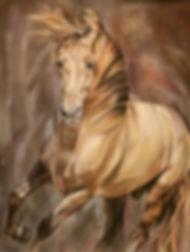 Andalusier Hengst, Pferdezeichnung in Pastellkreide von Jutta Pallasch - Pastellblicke Tierportraits