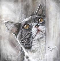 Katzenzeichnung, Katzenportrait, Galerie Katzen, Tierpotrait