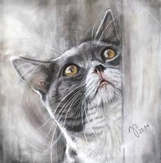 Katzenzeichnung Portrait Katze von Jutta Pallasch - Pastellblicke Tierportraits